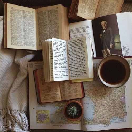 En esta imagen vemos varios libros todos ellos abiertos a la lectura, se aprecia por su imagen  que son libros de antaño,  y como no, al lado de ellos una buena taza de nuestro delicioso café. ah...También hay un cactus pequeño a modo de decoración.